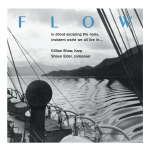 towe004_flow_gross