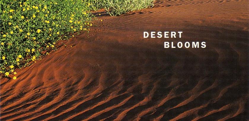 towe005_desert